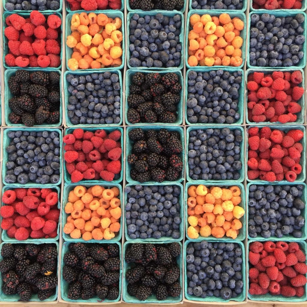 Berry Bins