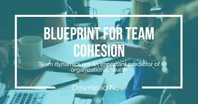 Blueprint for Team Cohesion