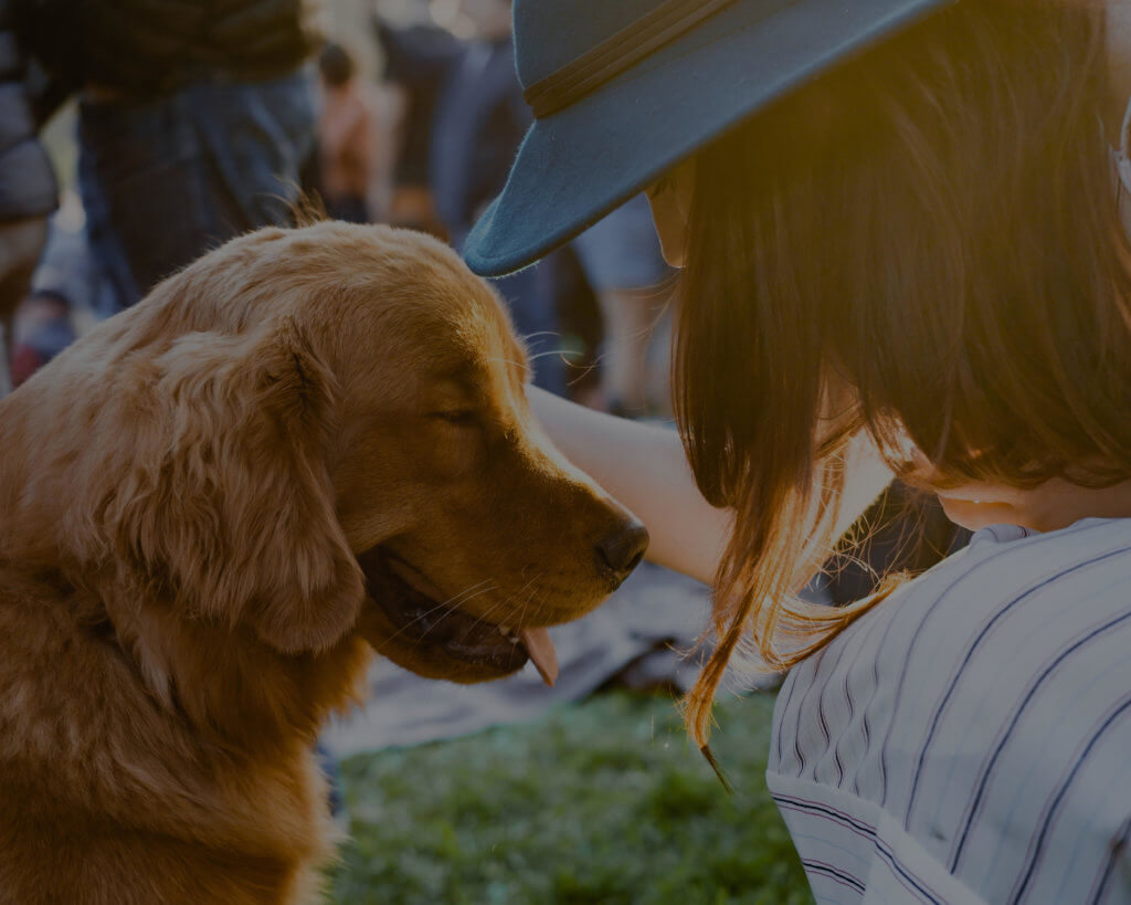 A woman wearing a blue hat petting a light brown puppy while contemplating changes in organizational culture at her work.